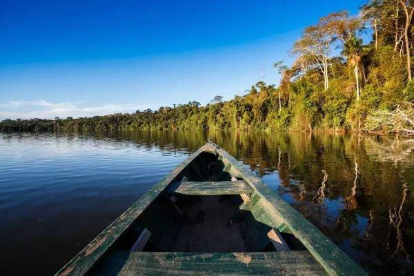 Ecoturismo na Amazônia: pacotes de viagem para ver as riquezas da floresta