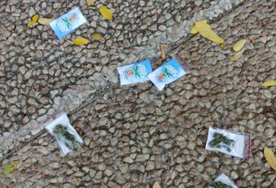 """""""Tá chovendo maconha"""": drone joga sacos de cannabis à população em Tel Aviv"""