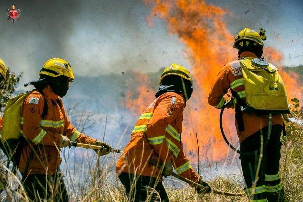 bombeiros apagando fogo