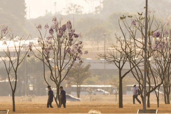 DF tem dia mais seco e quente do ano. Defesa Civil e Inmet emitem alerta à população calor seca