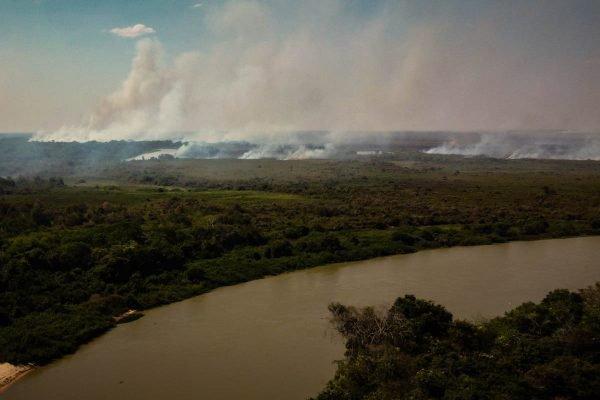 Pantanal On Fire In Brazil - PF investiga possíveis responsáveis por incêndios no Pantanal em MS