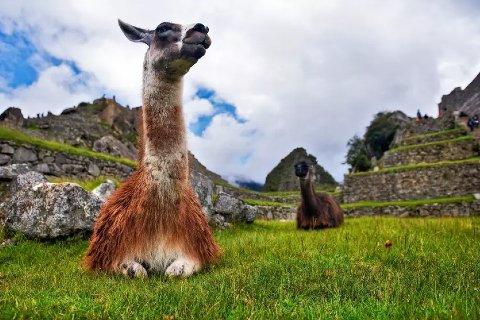 Pacote para Lima e Cusco, com 5 ou 6 diárias