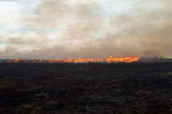 Corpo de bombeiro combate incêndios em MG