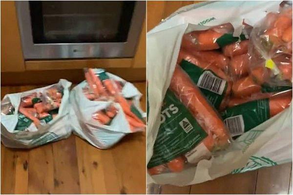 17 quilos de cenoura