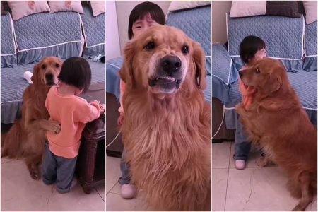 Harry e You You, na China