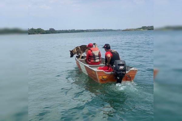 bombeiros em barco com cão farejador