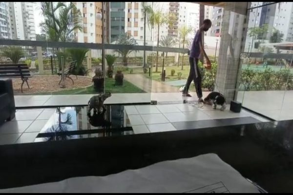 Homem em portaria de prédio com dois cachorros na coleira