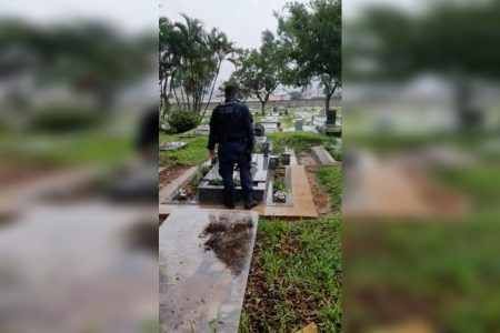 drogas em cova de cemitério