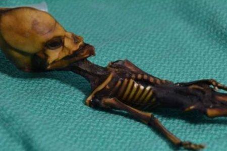 Alien de Atacama