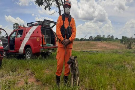 bombeiro com cão