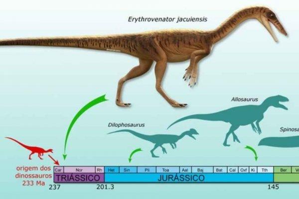 Anunciada descoberta de nova espécie de antepassado do tiranossauro rex em Agudo