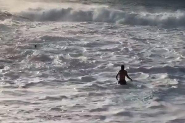 Surfista Mikey Wright