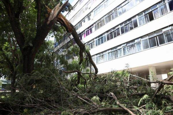 Estragos causados pela chuva na 306 Norte