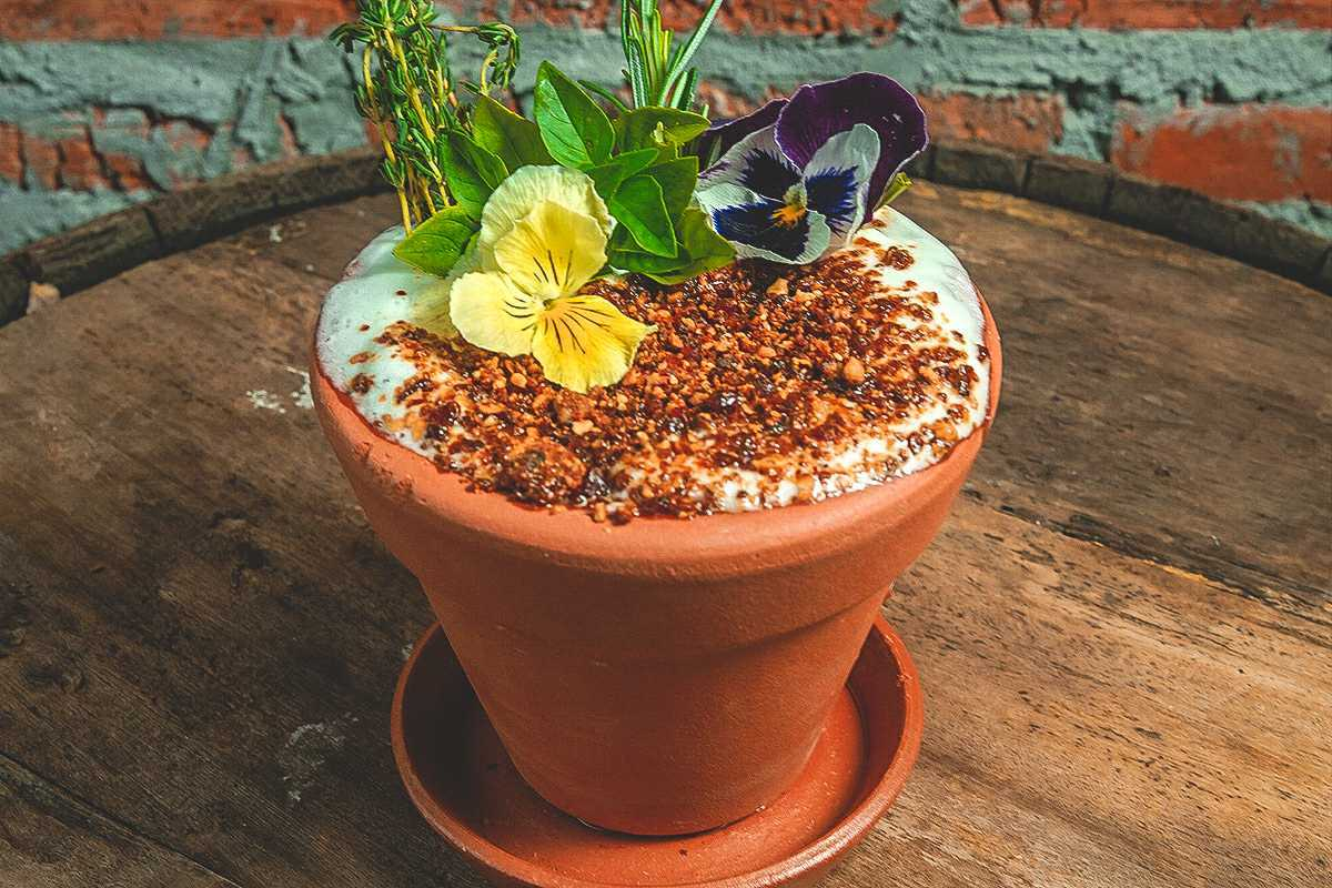 Jarro de planta com líquido, praliné de castanhas e flores comestíveis