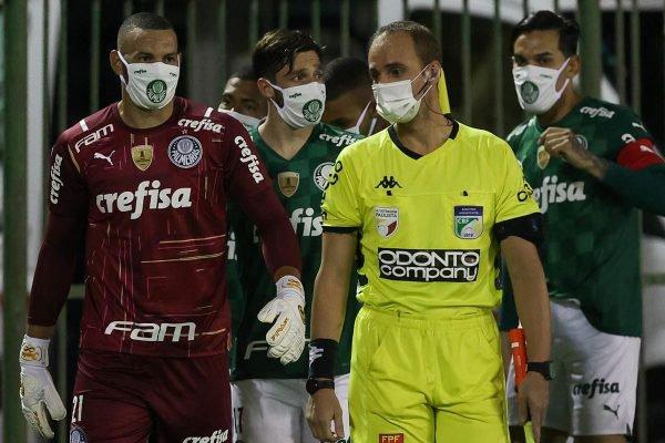 Palmeiras máscaras