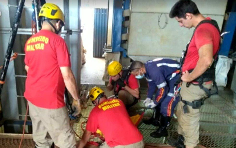 goias corpo de bombeiros regasta corpos de irmãos que morreram em secadora de graos
