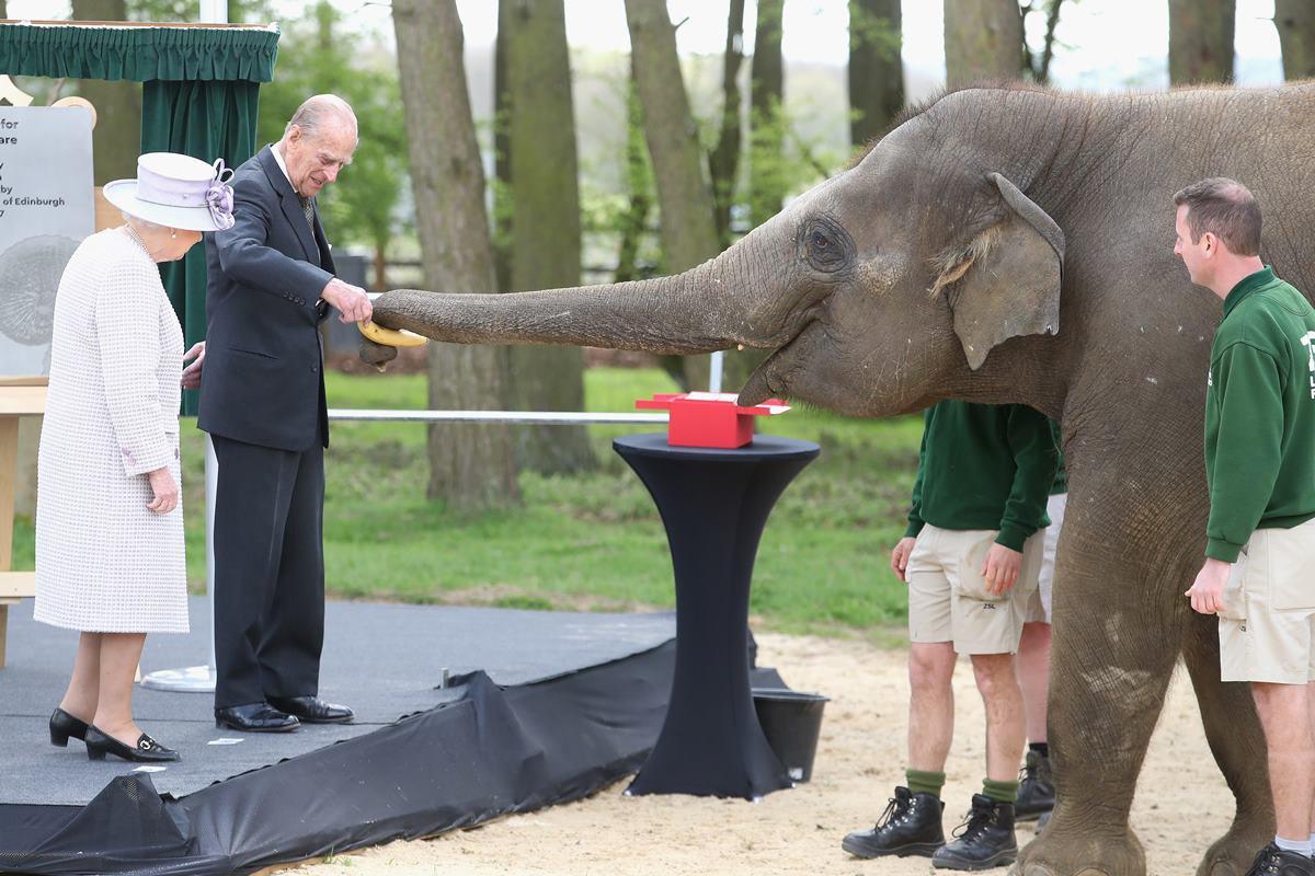 Rainha Elizabeth e príncipe Philip com elefante