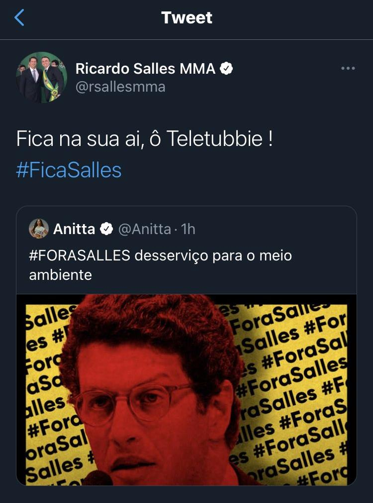 Ministro Ricardo Salles chama Anitta de Telettubie