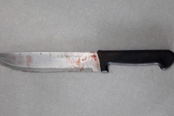 faca usada no crime