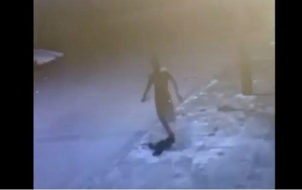 goias preso jovem que matou colega a facadas durante festa