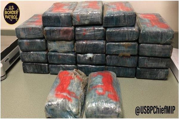 Banhista encontra 30kg de cocaína boiando em praia