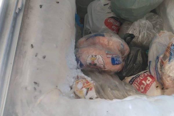 Polícia encontra até mosca congelada entre produtos de fábrica clandestina de paste em goiânia