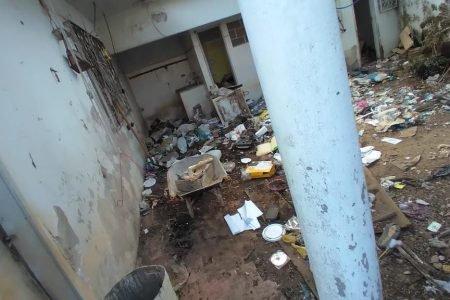 Casa de acumuladores assusta vizinhos no DF