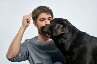 Homem adestrando cachorro