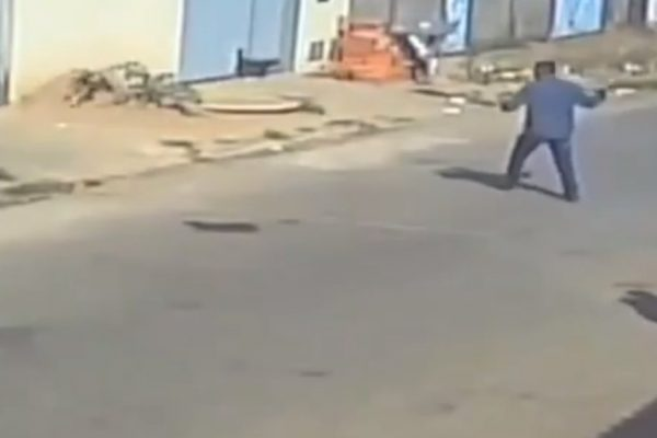 goias homem mata cachorro com pedaço de concreto