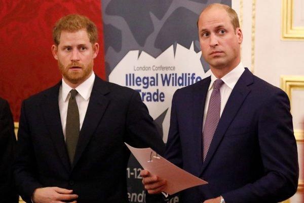 Príncipe Harry e William
