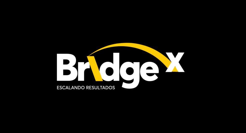 BridgeX_logo
