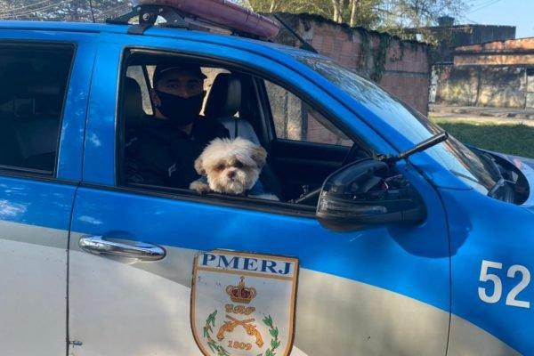 Cachorro levado em assalto é recuperado pela PM