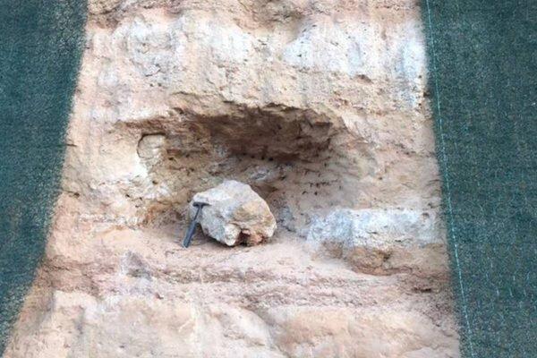 Fóssil de titanossauro