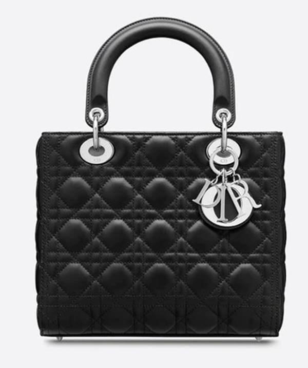 Bolsa Lady Dior