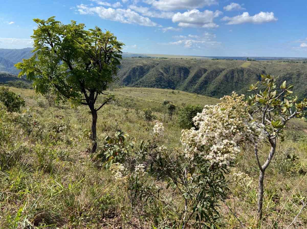 Fazenda Roncador tem uma das vistas mais bonitas do Distrito Federal