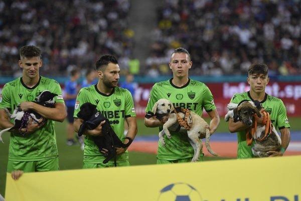 Cachorros jogadores Romênia