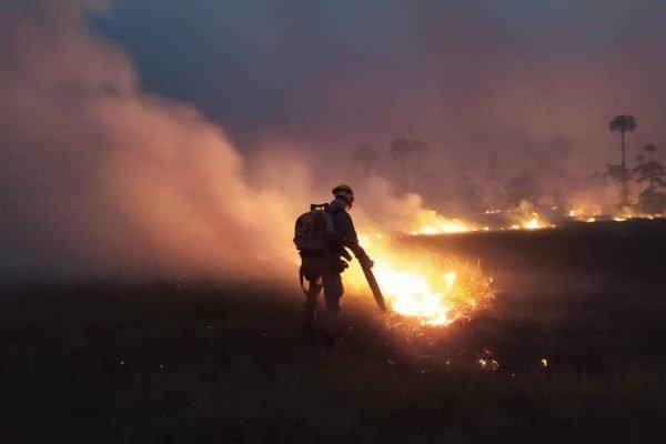 incêndio florestal atinge parque terra ronca, em goiás