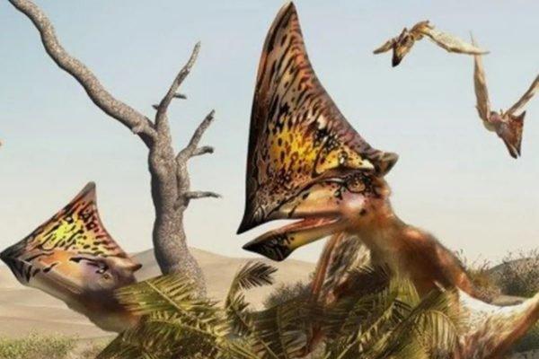Pterrossauro