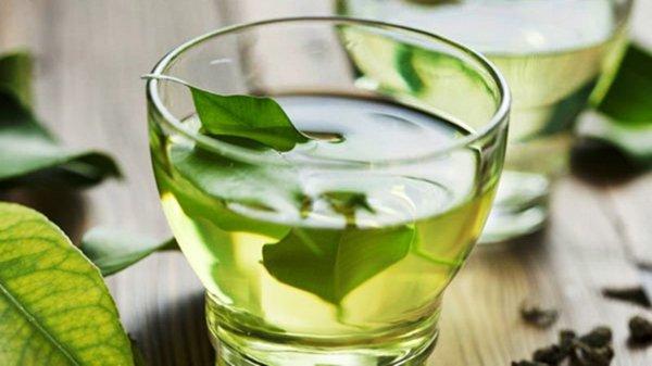 Chá da folha de abacate pode diminuir o estresse
