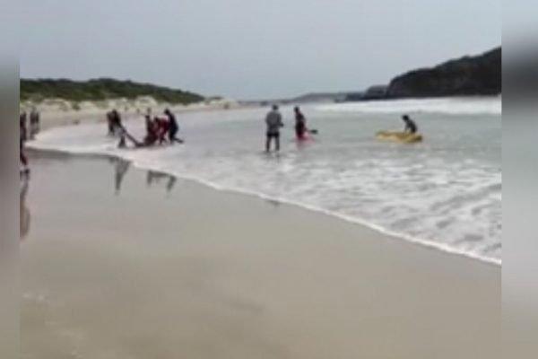 Três homens morrem por afogamento
