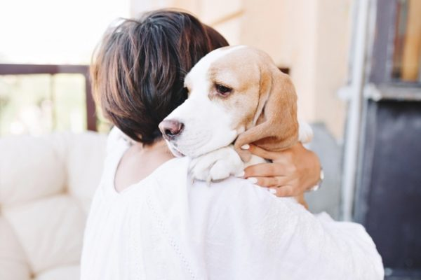 Cachorro abraçando criança