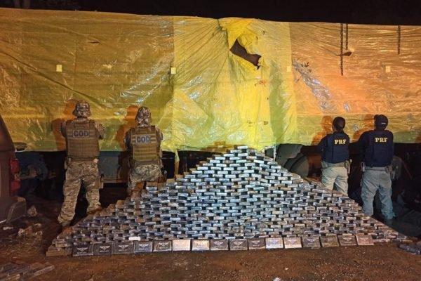 Polícia apreende cocaína escondida em carga de sementes de algodão em GO